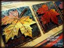 Autumn_Leaf_Trio_closeup6277.jpg
