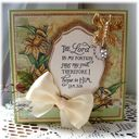 ODBDSLC53_Spring-_Scripture_collection_5_and_Daffodil_corner.jpg