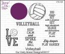 Volleyball_J792-300.jpg