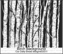 birch_background_2.jpg