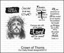 crown_of_thorns_2.jpg